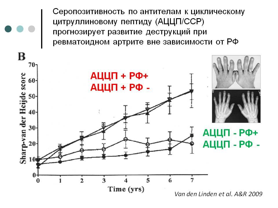 Цитруллиновый пептиды лелик анаболики